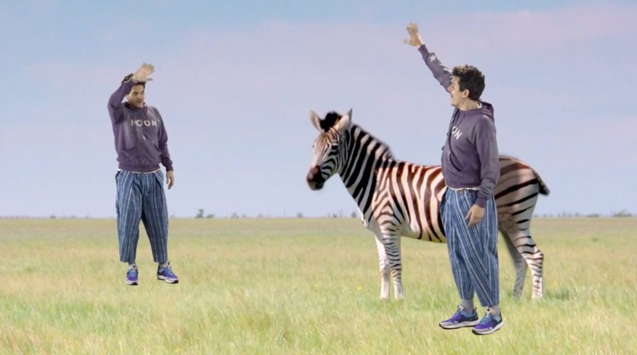 John Mayer New Light Zebra